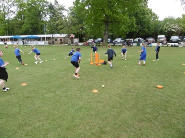 Year 3 and 4 cricket